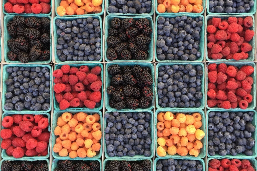 Different Types of Berries